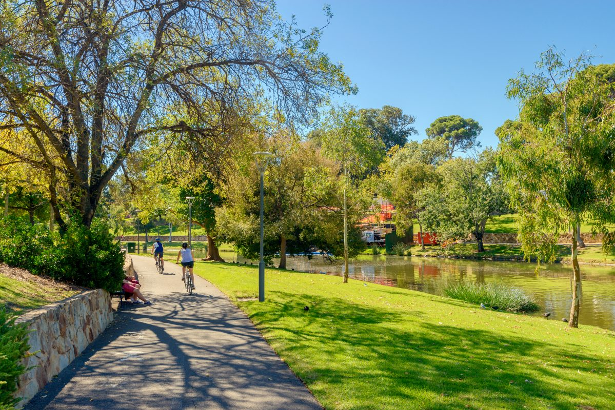 Adelaide: Unrecognized people riding their bicycles along Torrens river bike track in North Adelaide on a bright day